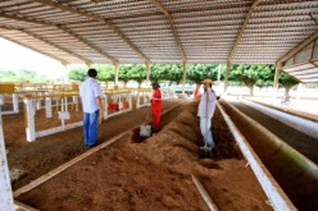 Parque de Exposição está sendo preparado para a Expoverde