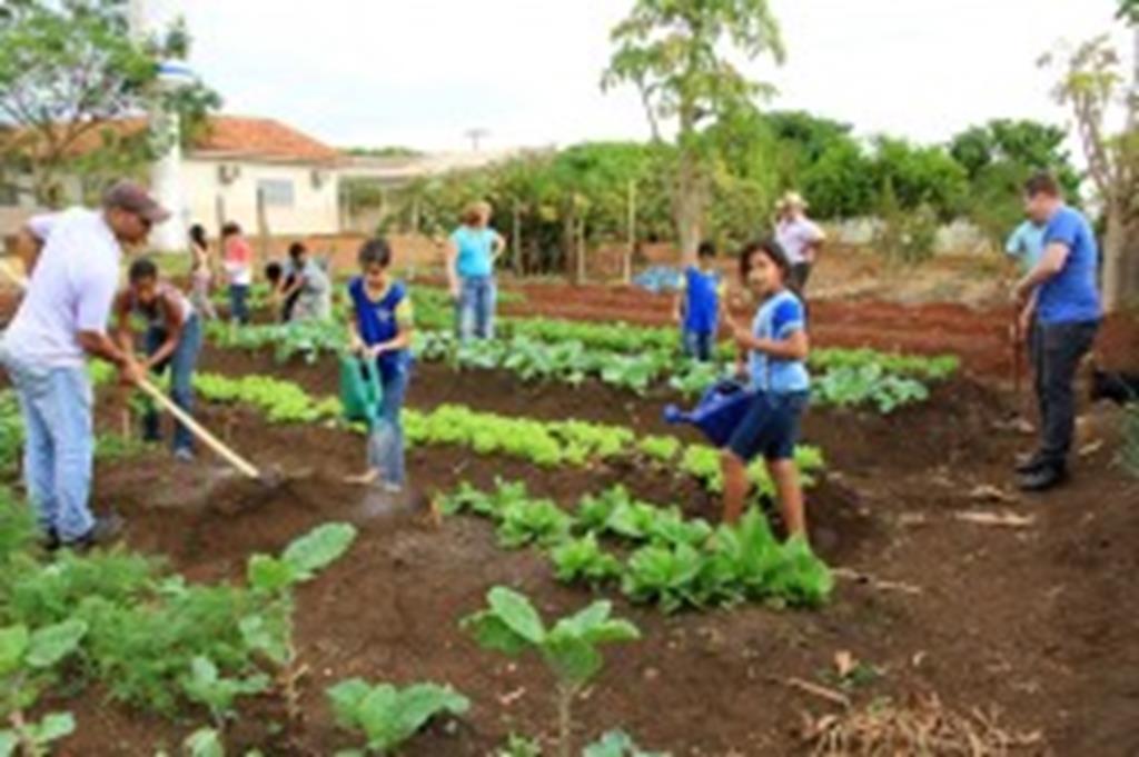 Servidores dedicam tempo livre à melhorar escola