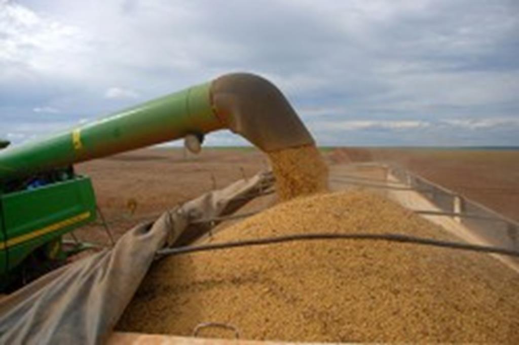 Campo Verde tem o 4° maior PIB Agropecuário do Brasil