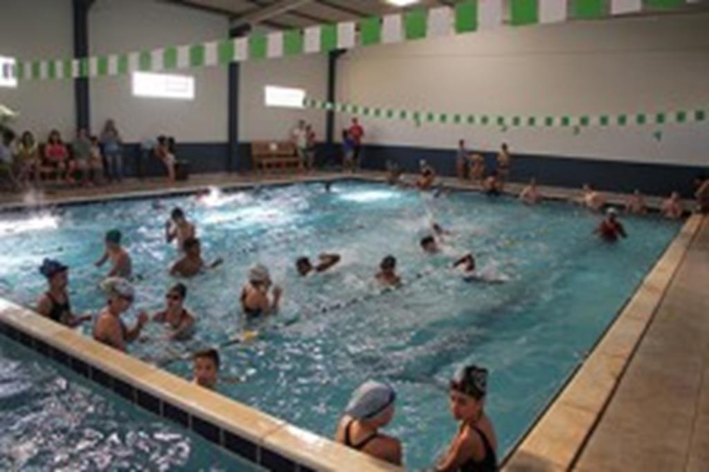 Escolinha democratiza acesso a aulas de natação