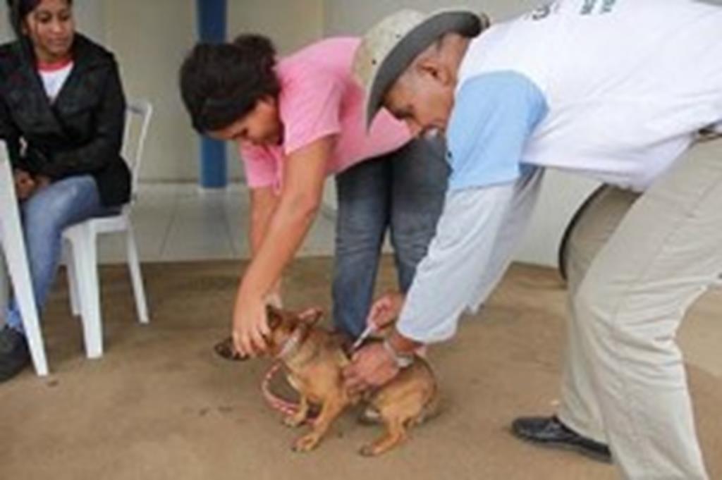 Vigilância Ambiental vacinará animais na Vila Rural