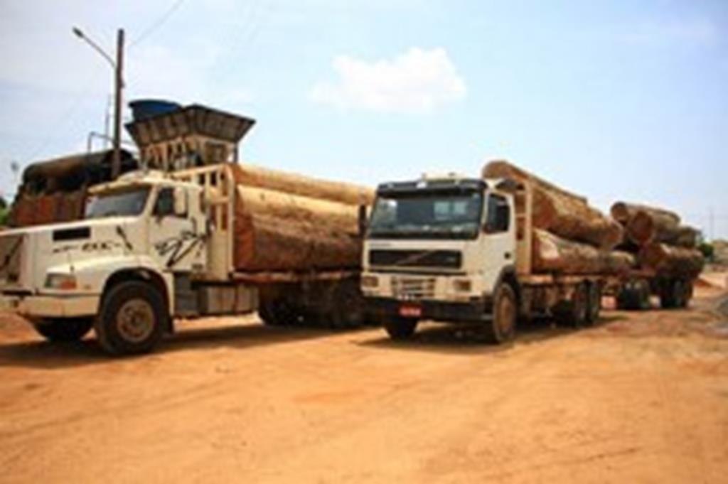 Prefeitura recebe caminhões e madeira do IBAMA