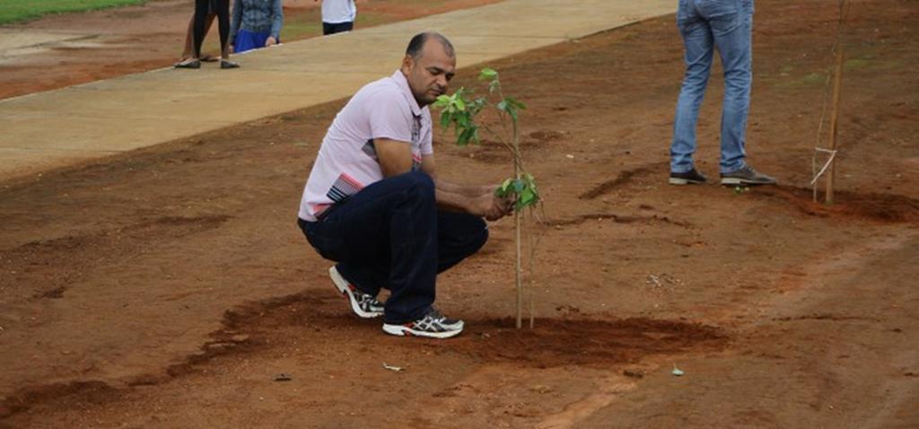 Árvores são plantadas no miniestádio Lucas Rudnick