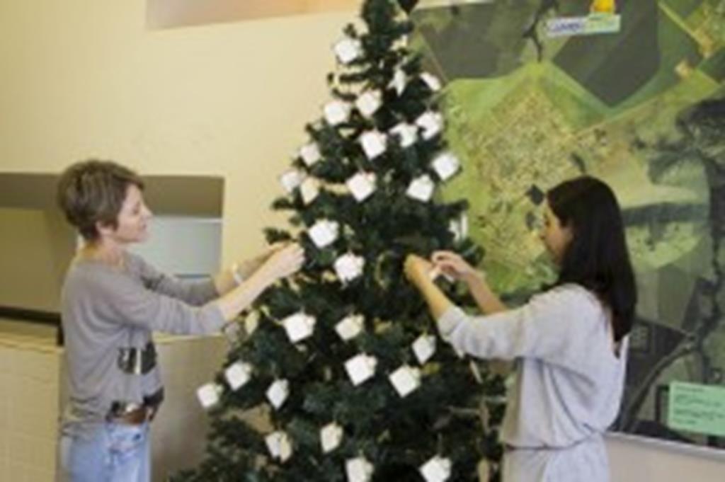 Árvore de Natal solidária é montada no saguão da Prefeitura