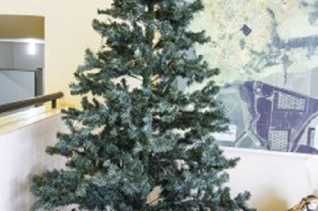 Cartões da Árvore de Natal Solidária foram todos retirados