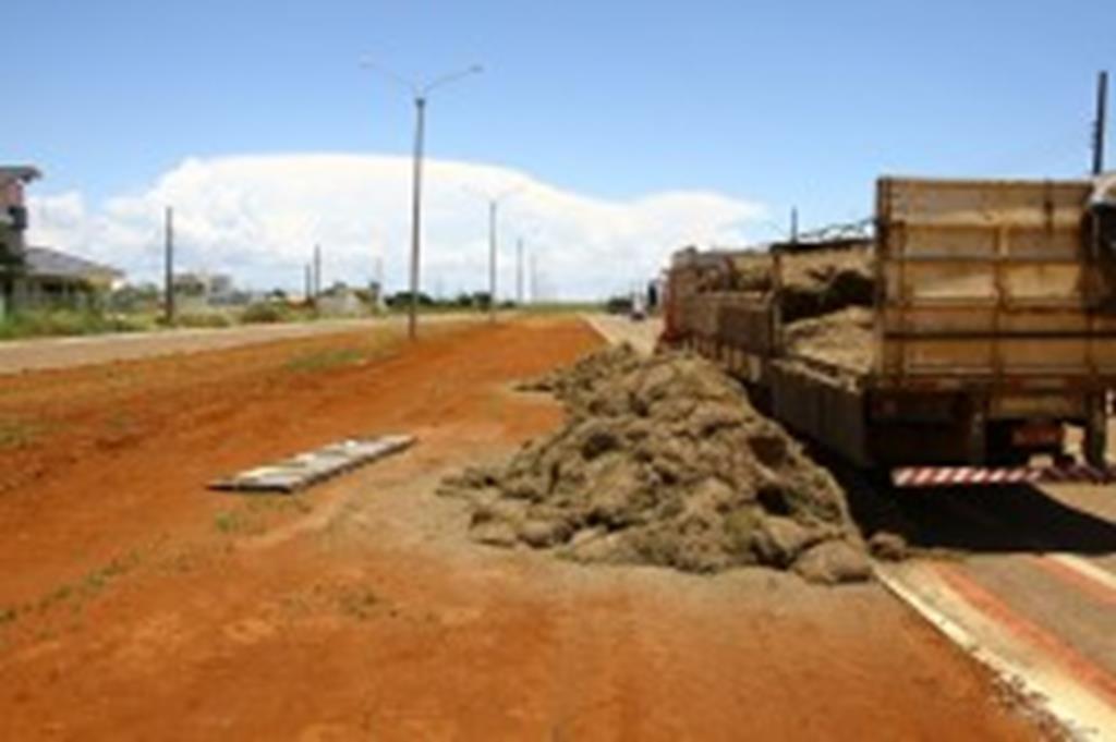 Grama será plantada em canteiro central de avenidas