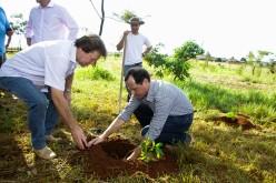 Parceria proporciona plantio de árvores em cabeceira de nascente