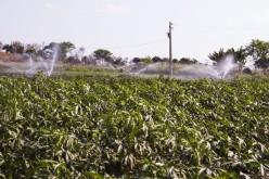 Produtores são beneficiados com melhoria no sistema de distribuição de água