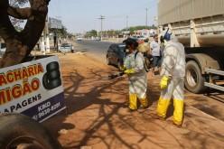 Multas para quem não eliminar criadouros do Aedes serão intensificadas
