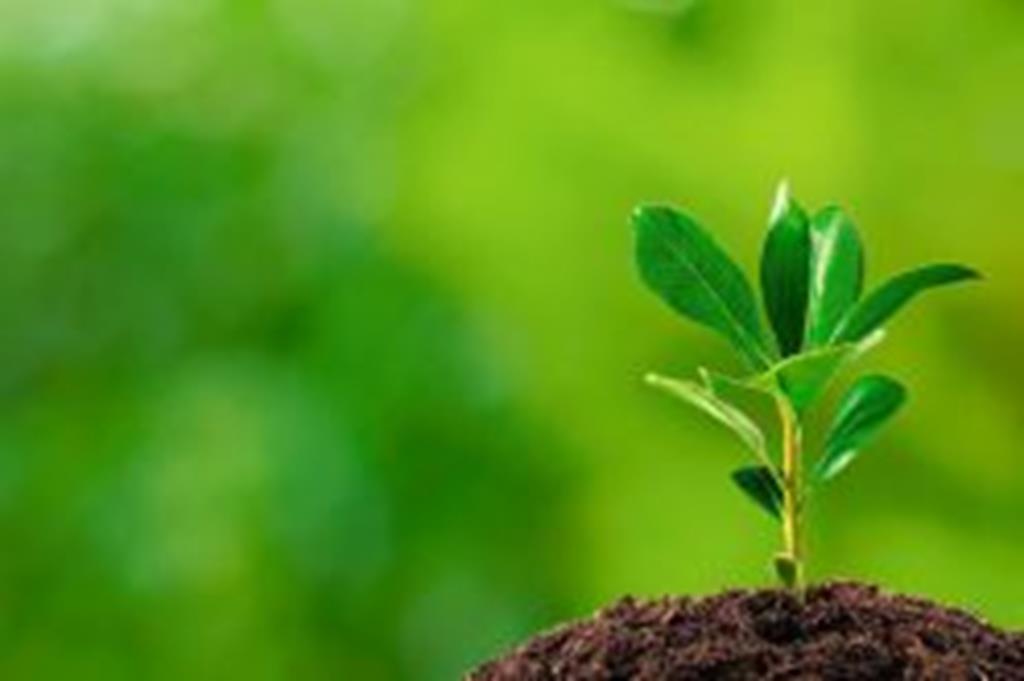 SEDAM/CV promove ciclo de palestras na Semana do Meio Ambiente
