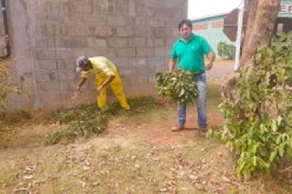 """Prefeitura de Campo Verde elimina plantas """"guaxas"""" em beira de rodovias"""
