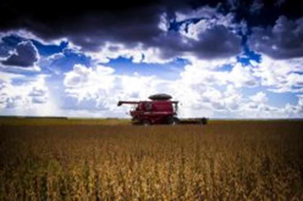 Números são retificados e Campo Verde é o 7º no agronegócio em Mato Grosso