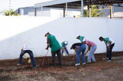 Pacientes do CAPS concluem curso de olericultura básica