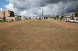 Plantio de grama é feito no canteiro central da Avenida Campo Grande