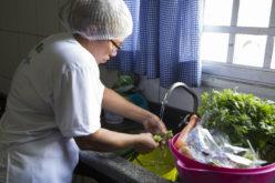Prefeitura aumenta aquisição de produtos da agricultura familiar