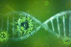 Sobe para 39 o número de casos descartados para coronavírus em Campo Verde