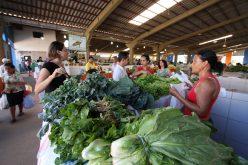 Decreto flexibiliza medidas restritivas à Covid-19 em Campo Verde